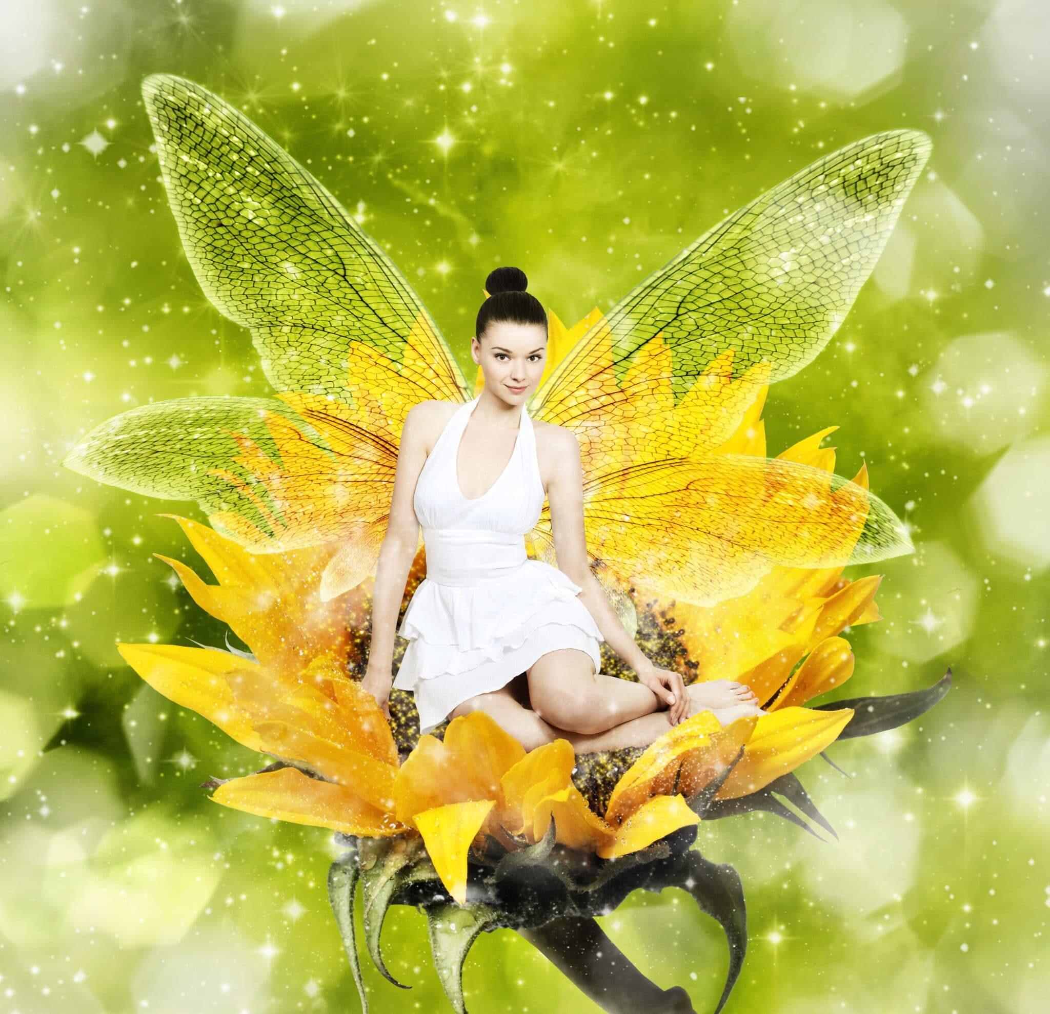 Fairies for Hire 2